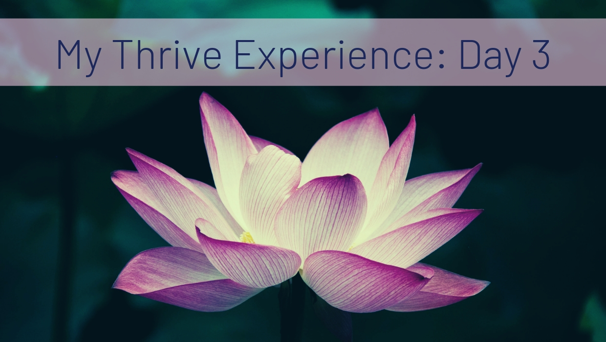 My Thrive Experience: Day 3